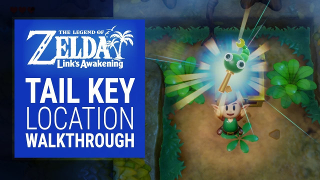 The Legend Of Zelda Link S Awakening Mysterious Forest S Tail Key Location Walkthrough