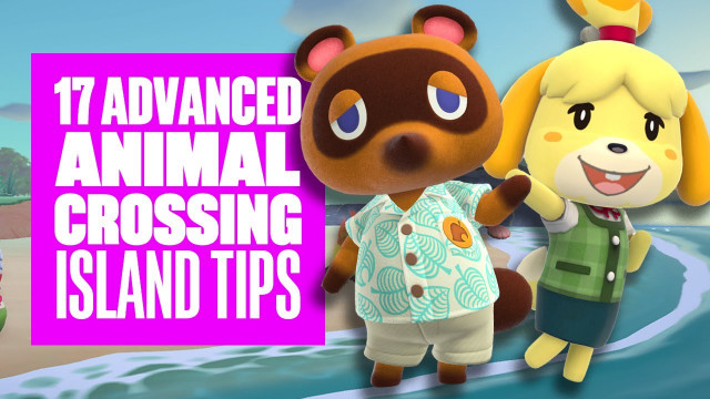 Animal Crossing Saharah Departure Time Tickets And Mysterious